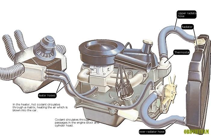 Tiếng Anh Chuyên Ngành Ô Tô - Car Antifreeze Coolant - Nước Làm Mát Chống Đông