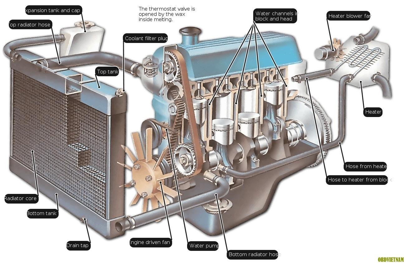Tiếng Anh Chuyên Ngành Ô Tô - An Engine Radiator - Bộ Tản Nhiệt Động Cơ